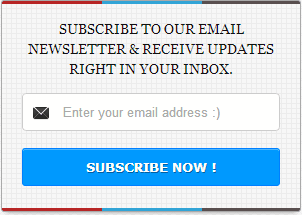 newsletter-subscribe-box[3]